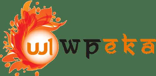 wpeka 496x244 - 25% Off On WPEKA Premium WordPress Plugins