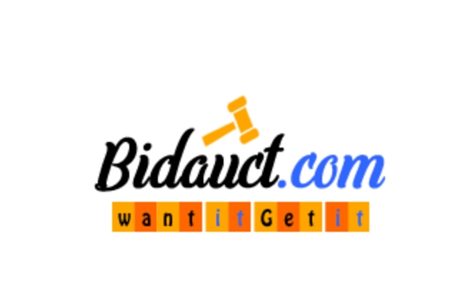 bidauct.com