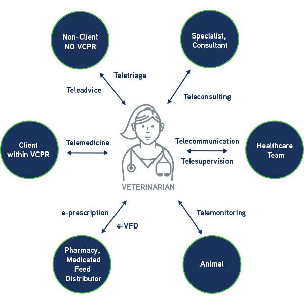 Telehealth in veterinary practice infographic