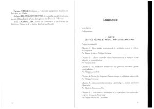 07 Extraditions et Cooperations internationales pdf 300x212 - 07-Extraditions_et_Cooperations_internationales