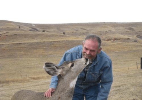Deer Rescue | A Voice of Nature