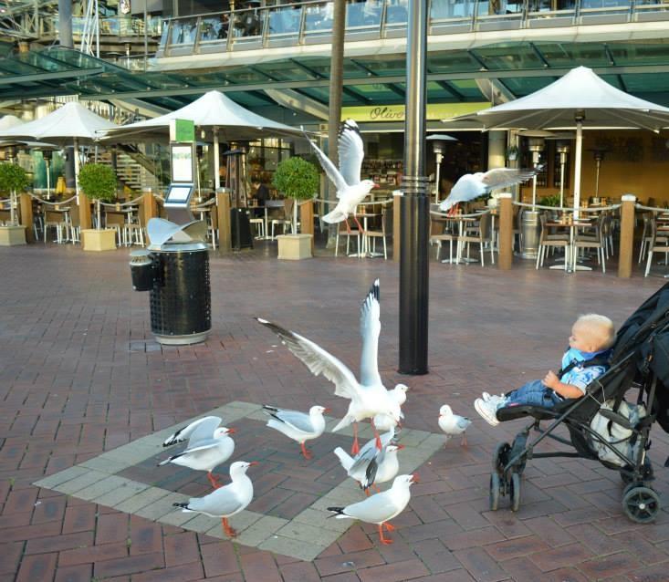 Darling Harbour met kind