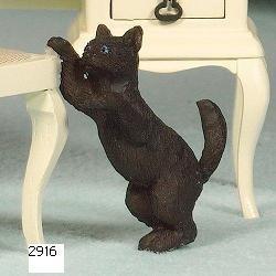 katten  Avontuur In Miniatuur