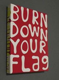burn down your flag