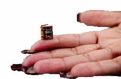 le plus petit livre du monde