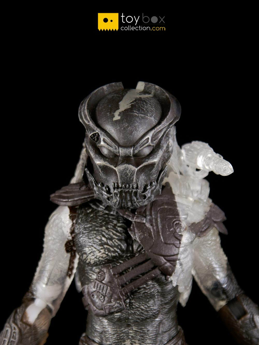 Predators Date Release 2