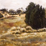 Painting of sand dunes and bulokes at wyperfeld national park