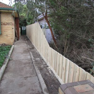 Our new fence completed