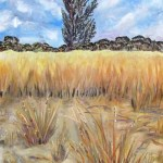 oil painting of grasses at wyperfeld national park