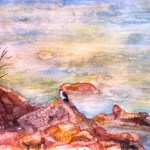 Watercolour painting of a bird perched on a rock on a rocky shoreline, victoria
