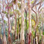Painting of trees at mount dandeong, sassafras