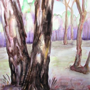Closeup painting of bark on a very beautiful river red gum at Barmah national park.