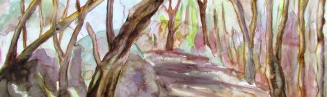 watercolour painting of shadows cast by eucalytus trees on a path, australian art
