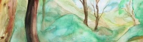 Watercolour painting at the venus pools, Grampians, Victoria