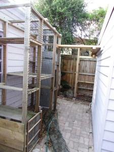 incomplete cat enclosure