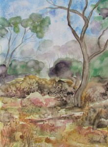 watercolour painting of a scene from kooyoora state park