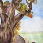 A watercolour of a tree on a hill by australian artist, Avril E Jean