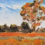 Watercolour painting of orange trees in an Australian Landscape