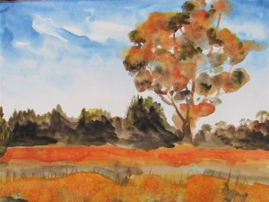 Watercolour painting of orange trees in an Australian Landscape
