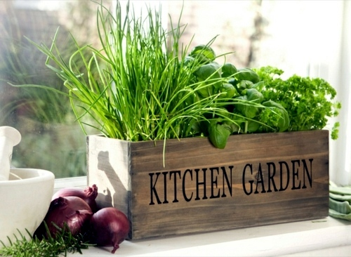Herb Garden Ideas For Wonderful Feng Shui Kitchen Interior