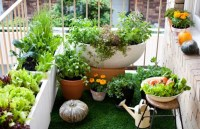 On balcony make hanging garden  Cool ideas for small ...