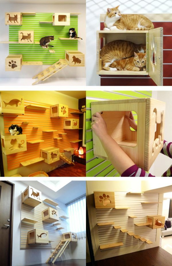 Modular Cat Climbing Wall Of Catswall Interior Design