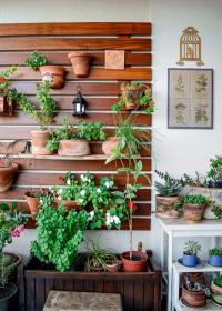 Create a vertical garden for your home by wooden panels ...