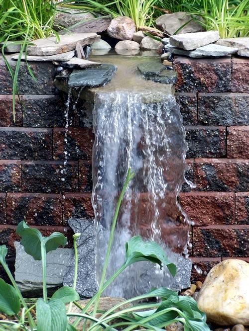 10 Cool Water Garden Ideas – Whimsical Naturalistic Garden Design