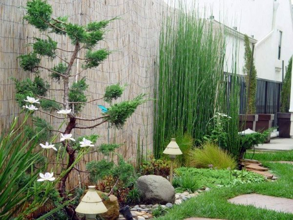 Contemporary Eclectic Japanese Inspired Garden Asian Landscape