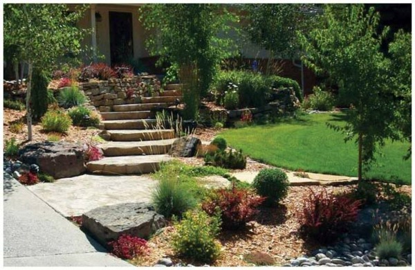 cool landscaping spring
