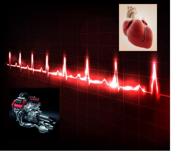 Za motor in srce voznika lahko rečemo, da delujeta usklajeno.