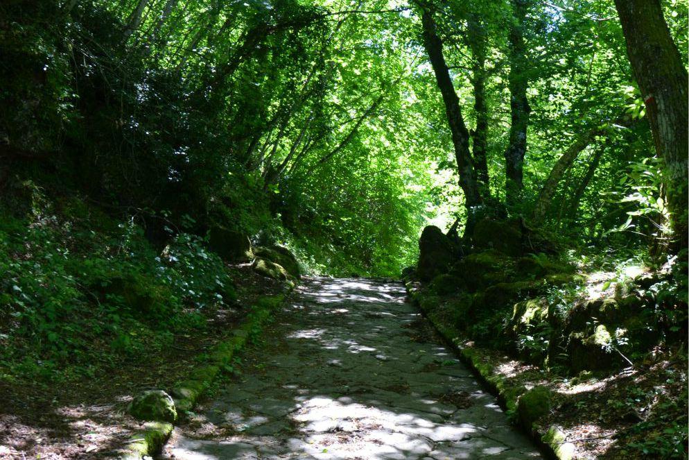 Via Sacra al Monte Cavo