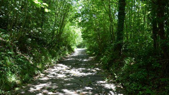 Via Sacra, la salita al Monte Cavo tra i Castelli Romani
