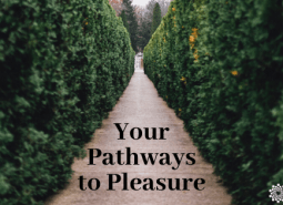 Pathways to pleasure