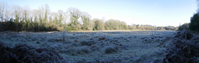 The frosty view near Farnham