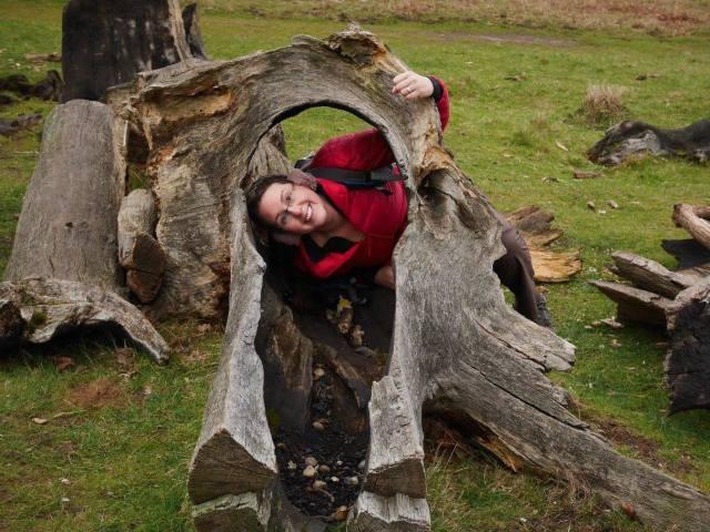 Hiding in a tree