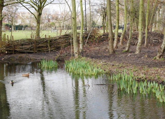 The pond on Wandsworth Common