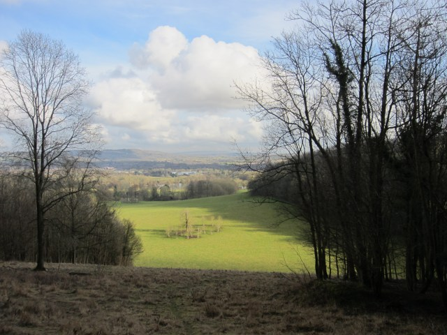 View from Gatton Park
