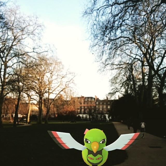Totem bird hates you