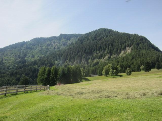 Looking up to Mount Bulacia/Puflatsch