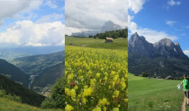 Dolomites holiday - Alpe di Siusi