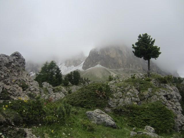 Boulder garden to the peaks