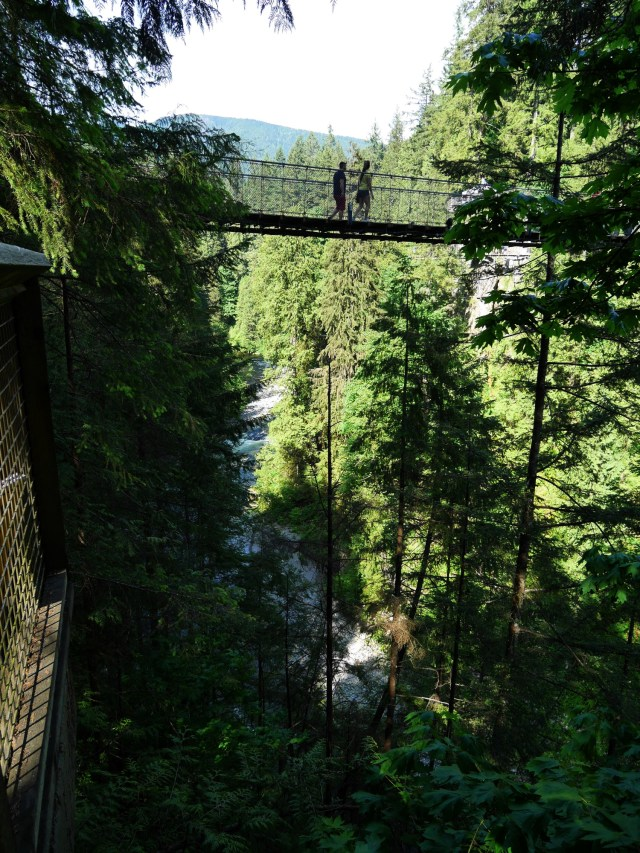 Capilano Suspension bridge from below