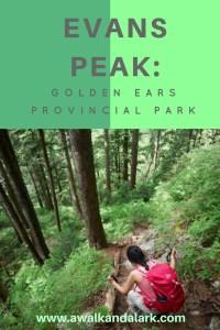 Evans Peak