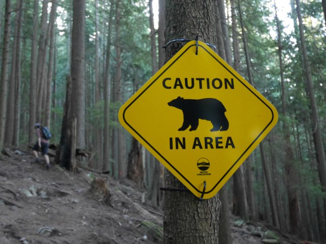 Caution Bear in area!