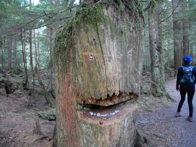 Tree gremlin at the start of Lynn Canyon