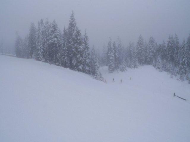 Mount Seymour snow views