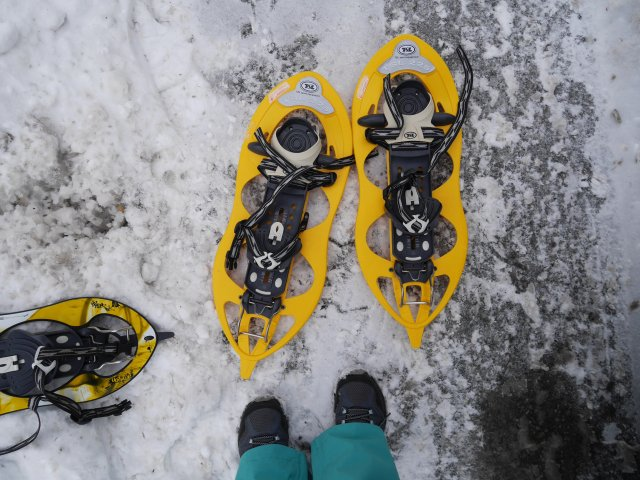 This is what snowshoes look like