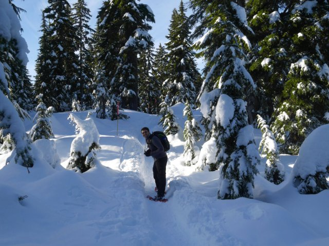 Nordic snowshoe area