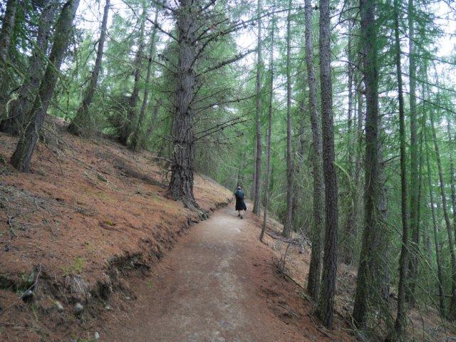 Mount John Walkway